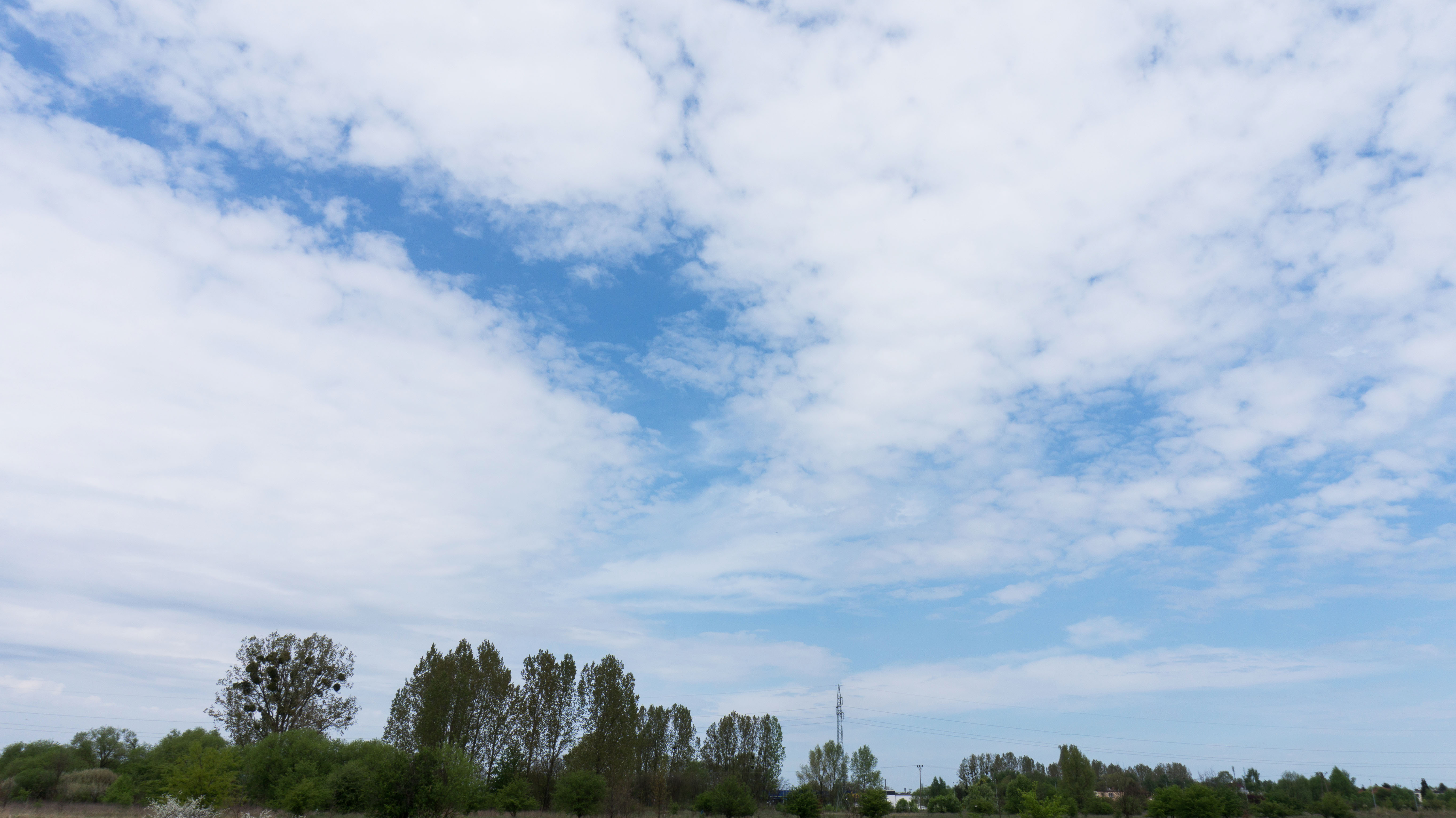 Free Spherical Skies - Viz-People